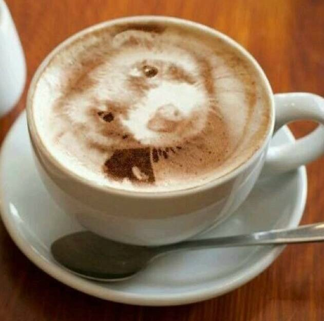 latte-art-dog