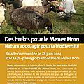 Samedi 28 juin : decouverte de l entretien des landes du menez hom
