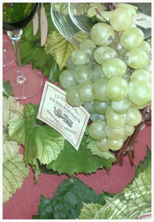 2009_10_04_graines_de_vendanges35