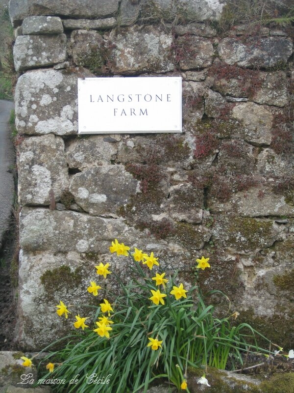 Langstone farm