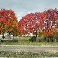 L automne en Virginie