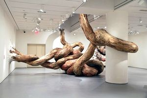 Torsions-sculptures-bois-Henrique-Oliveira_b