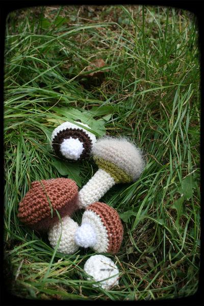 ramasser_les_champignons_du_jardin