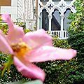 Lui dédier une rose, Campo San Vidal
