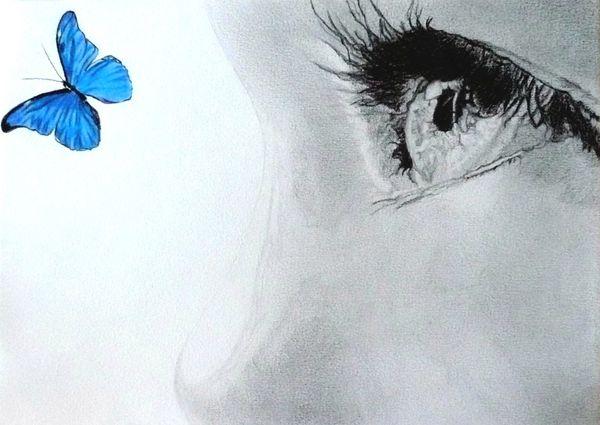 regard d'enfant et papillon