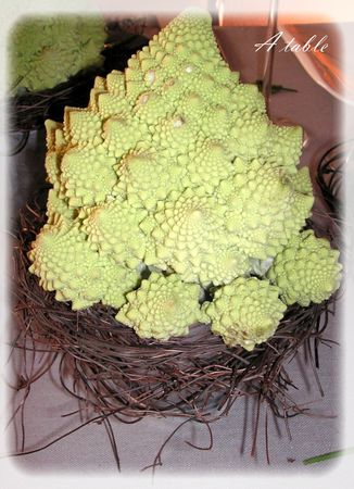 table_romanesco_009_modifi__1