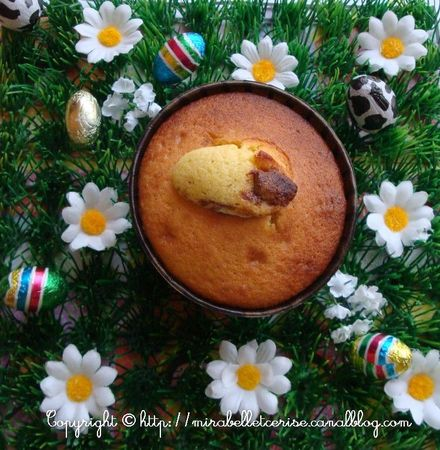muffins oeufs choco3