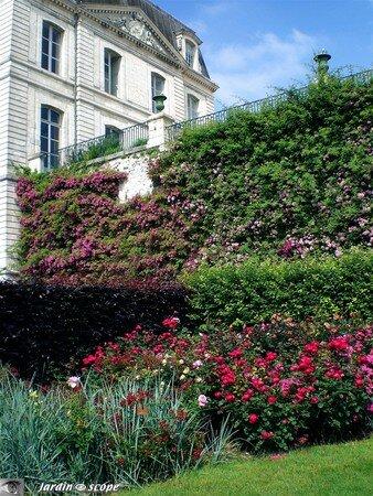 57_Roseraie_de_Blois