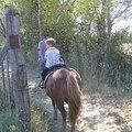 Pompom, le poney-bourricot!!