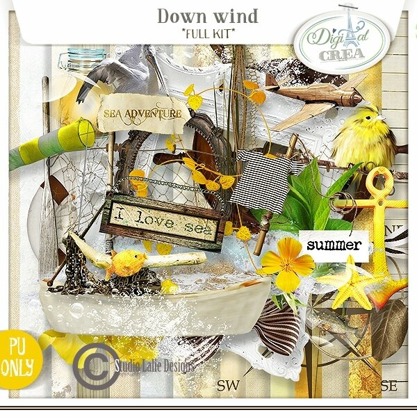 studiolaliedesigns_downwind_folder