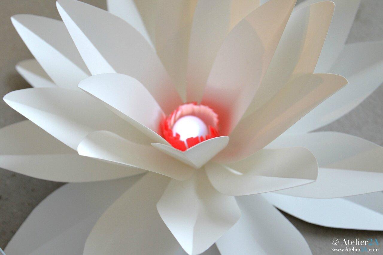 Fleur en papier tous les messages sur fleur en papier - Fleur de papier ...