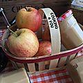 Beurre de pommes 041