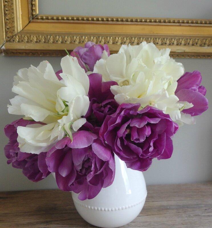tulipe-a