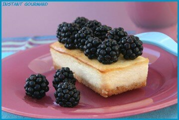 CHEESECAKE_CITRON_MURE_2