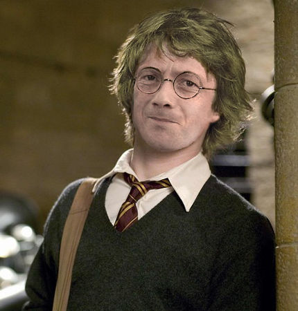 harry_potelfe