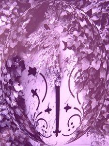 porte_lentille_violette
