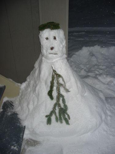 Albany Woodlake Apartments sous neige