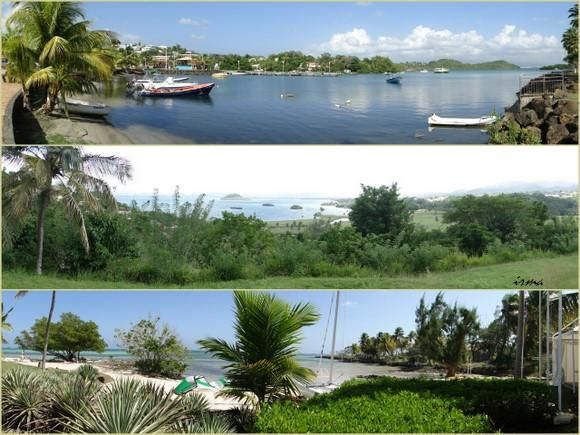 2010_01_Martinique2