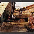 C mes voyages : yémen, 1998