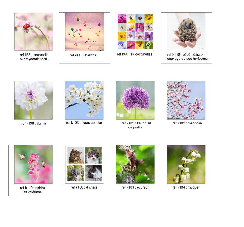 cartes-fleurs-carréesP