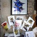 expo photos à l'Atelier d'Elise