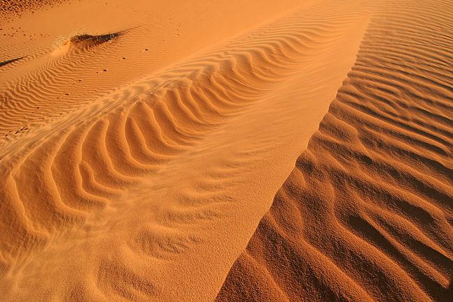 mauritanie22009-513