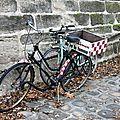 vélo, automne_2626