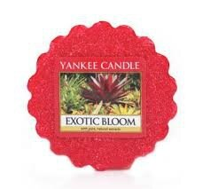 exotic bloom