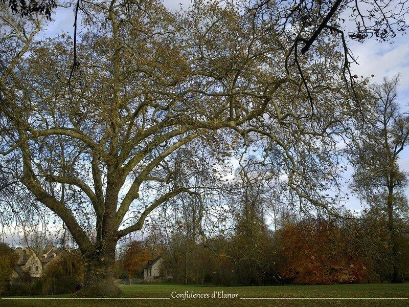 Jardins Versailles