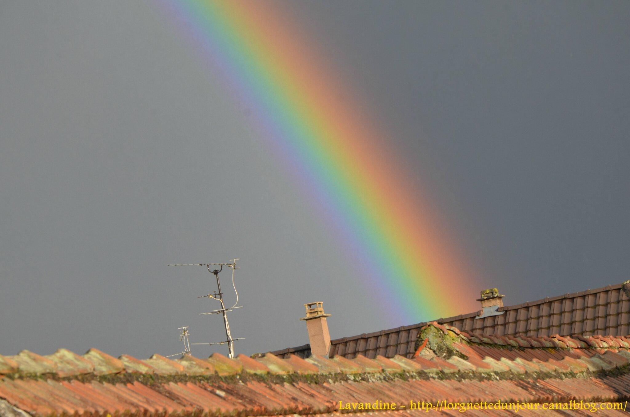 17/01/15 : De la pluie….