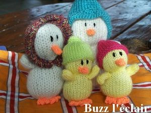 fam_canards_buzz