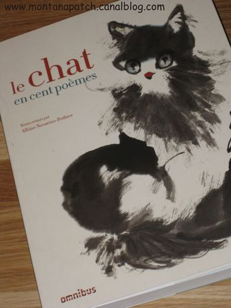 Montanapatch_livre_chat_6