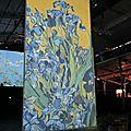 Imagine Van Gogh - La Vilette - IMG_1127