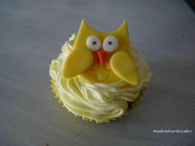 cupcakes hibou