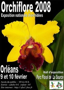 ORCHIFLORE2008_web