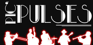 Logo_Pic_Pulses