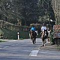 La Balade du Jambon - Balade à cheval dans le mortainais (31)