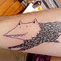 Des loups dans les murs