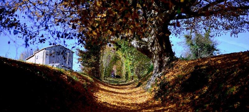 Beaulieu_Dignac_Oct15