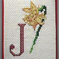 149 J de Tortue