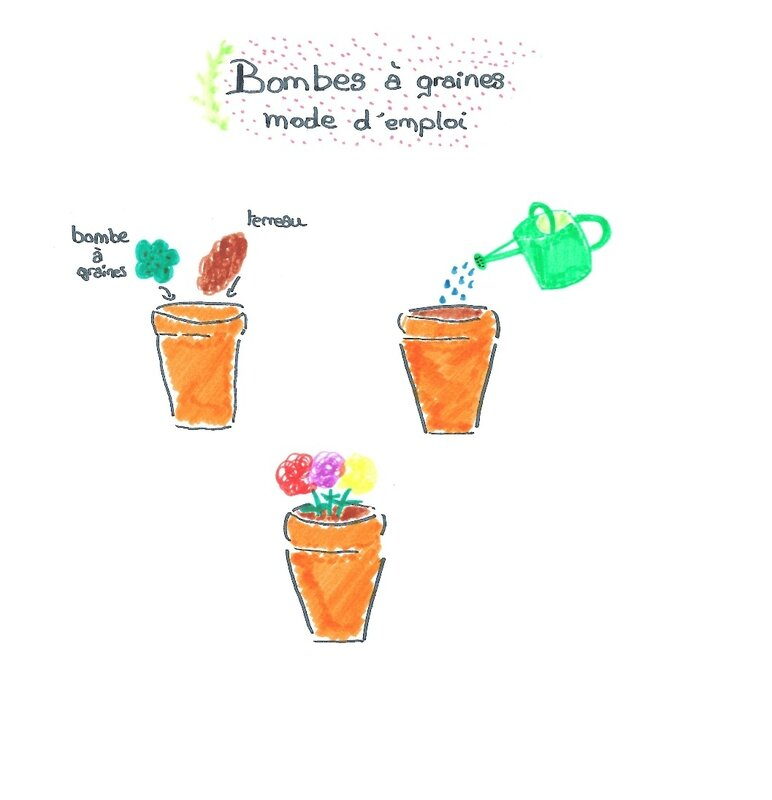 Bombes de graines version blog