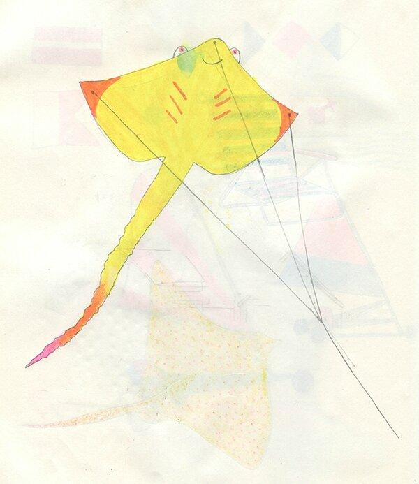 raie volante jaune-bd