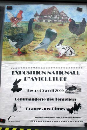 Expo_commanderie_des_Templiers_Francis_Dechy_vendredi_27_mars_2009