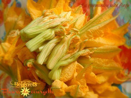 beignets fleur de courgette