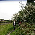 148 - Sentier de Saint-Ghislain - Terril de Marcasse