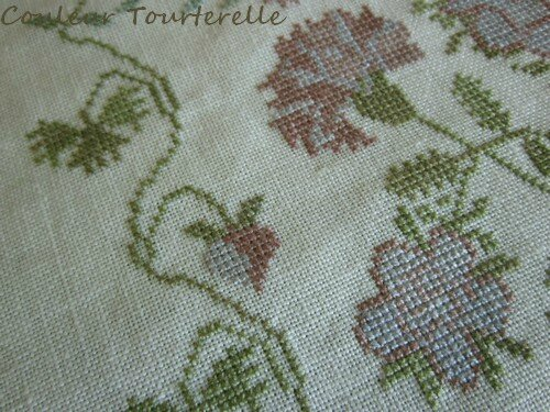 Margaret W Brown 1838 - Couleur tourterelle 02 4