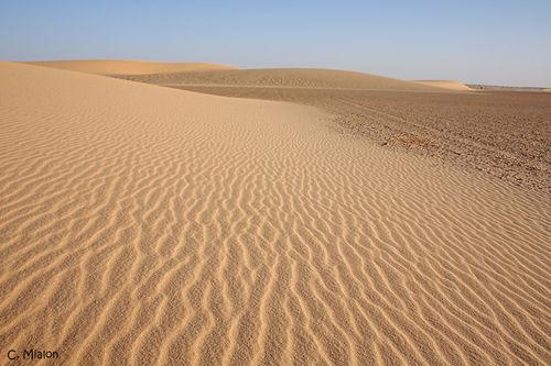 petite dune près de la côte