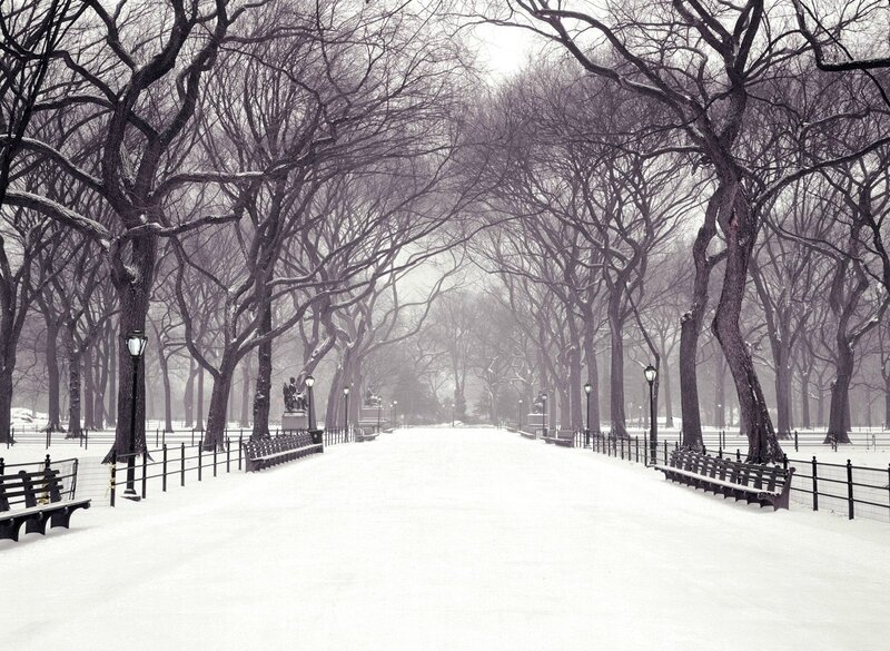 central-park-wallpaper-snow