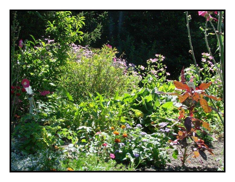 Amiens les hortillonnages des nouvelles de moi - Petit jardin interieur amiens ...