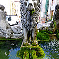 fontaine aux lions à Plauzat